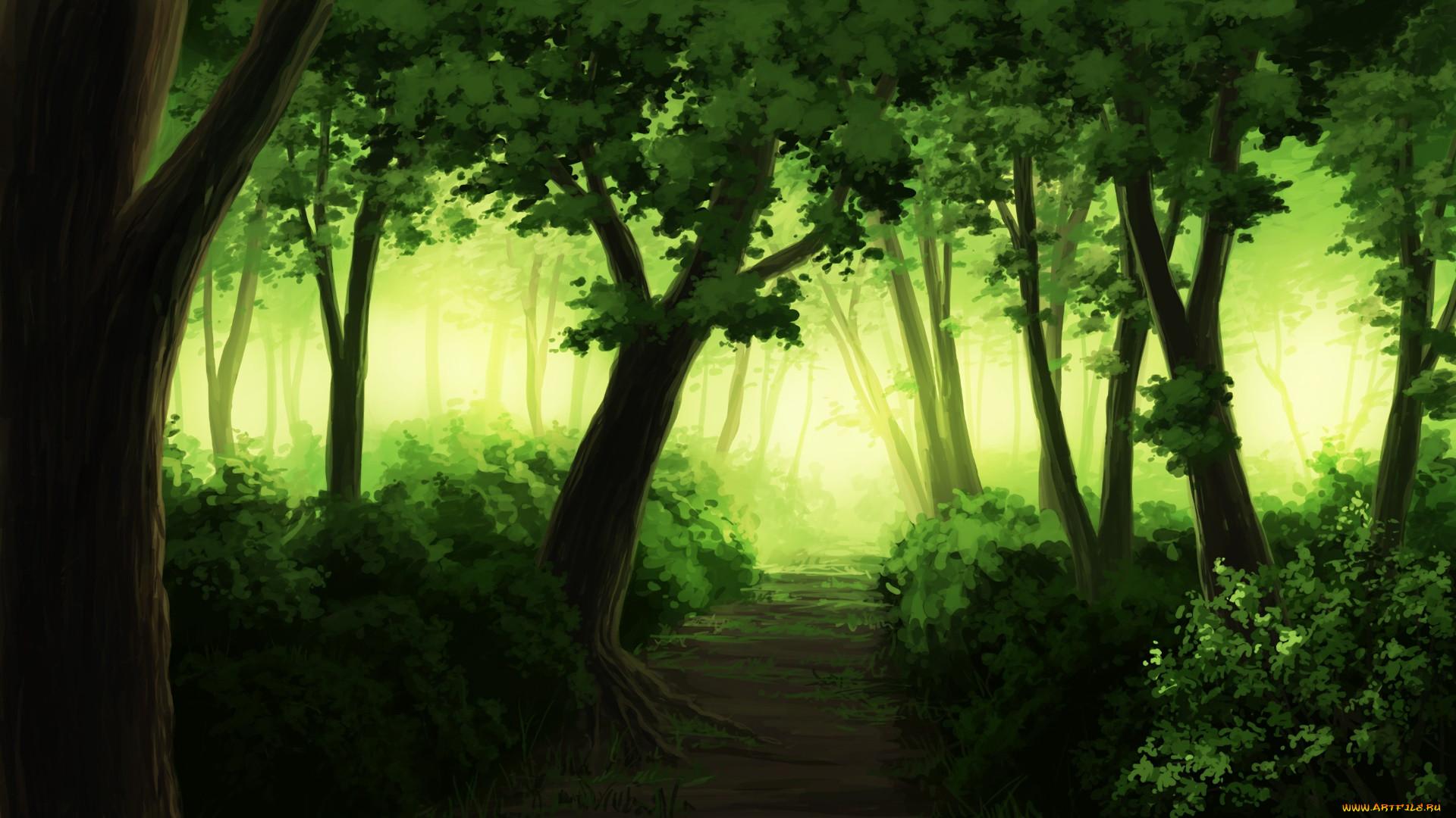 лес нарисованный картинки